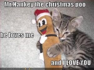 cats & poop