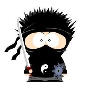 south park ninja