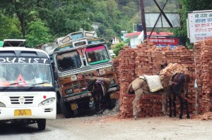 Donkeys moving bricks!
