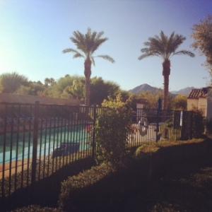 Our backyard!