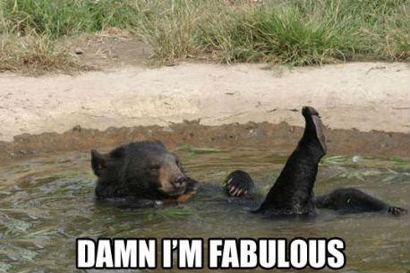 damn-im-fabulous
